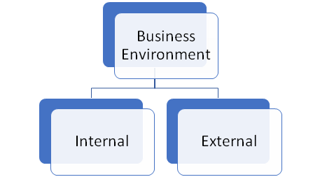 two-types-of-business-environment